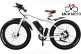 500W big power fat tire electric bicycle / fat electric bike / cheap e bike