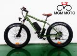 Harley electric bike ,fat tire hot sale mountain electric bike / 500W electric bicycle